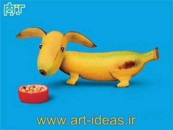 هنرنمایی  های زیبا با میوه و سبزیجات تازه