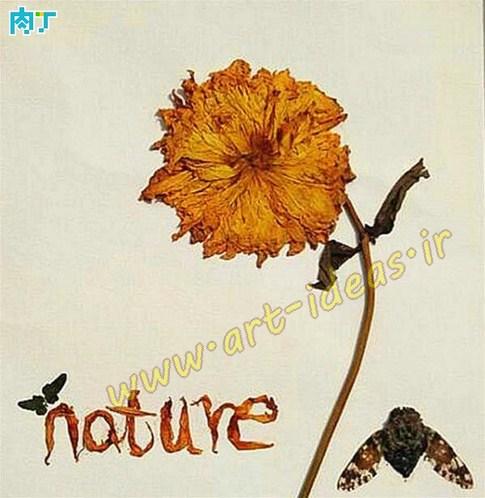 خلاقیت با برگ و گلبرگ گل خشک